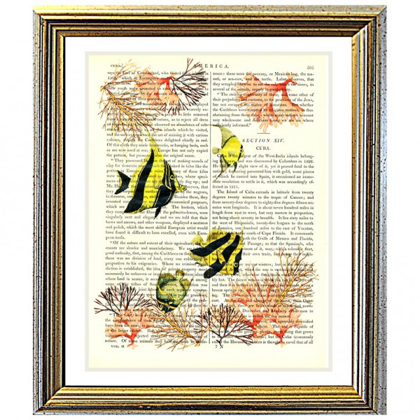 Art on antique book page. Angel Fish and Soft Coral