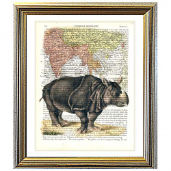 Asian Rhino and Map of Asia