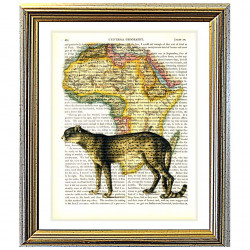 Cheetah on a Map of Africa