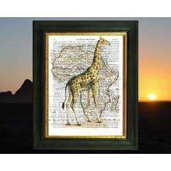 Giraffe and Map of Africa