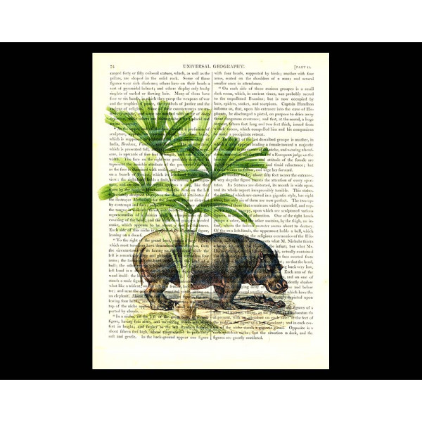 Art on antique book page. Hippopotamas under a Palm Tree