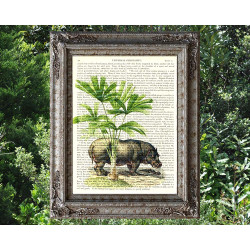 Hippopotamas under a Palm Tree