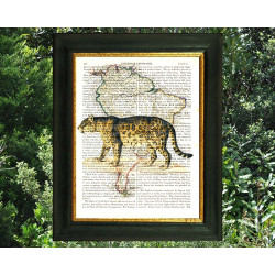 Jaguar on a Map of South America