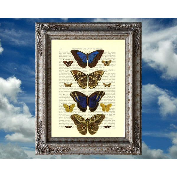 Art on antique book page. Vintage Butterflies