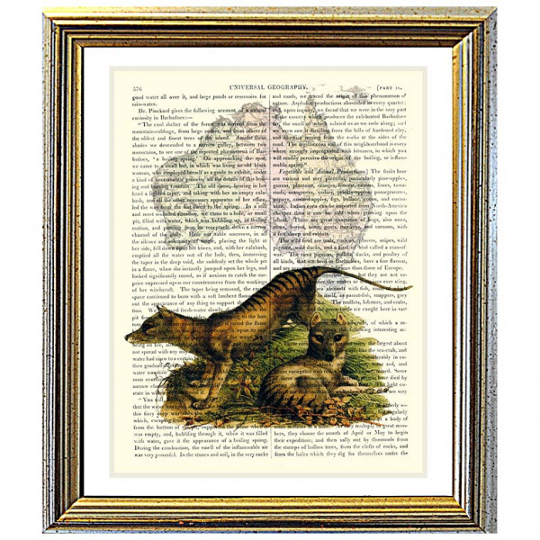 Art on antique book page. Tasmanian Tiger and Map of Australia