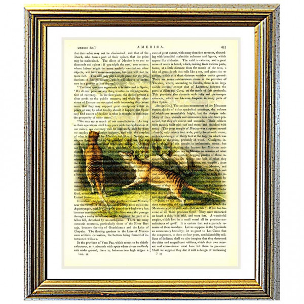 Art on antique book page. Tasmanian Tigers In The Wild