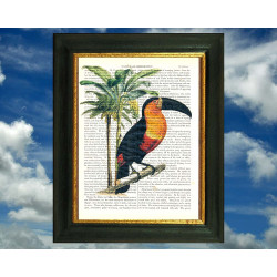 Toucan and a Banana Palm