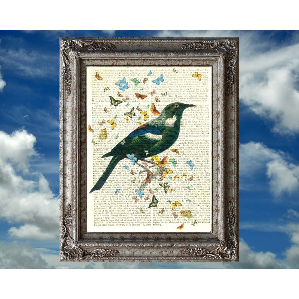 Art on antique book page. New Zealand Tui bird and Butterflies