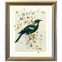 New Zealand Tui bird and Butterflies