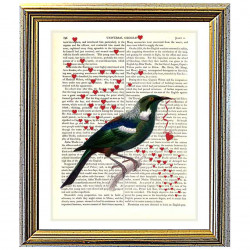 New Zealand Tui bird and Love Hearts