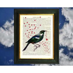 New Zealand Tui bird and Love Hearts