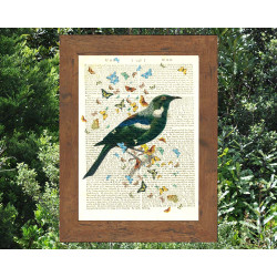 New Zealand Tui bird and Butterflies