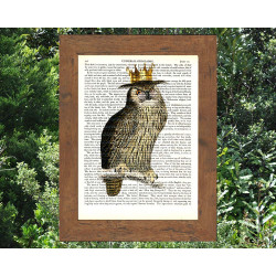 Wise Owl With Gold Crown