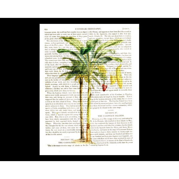 Art on antique book page. Banana Palm