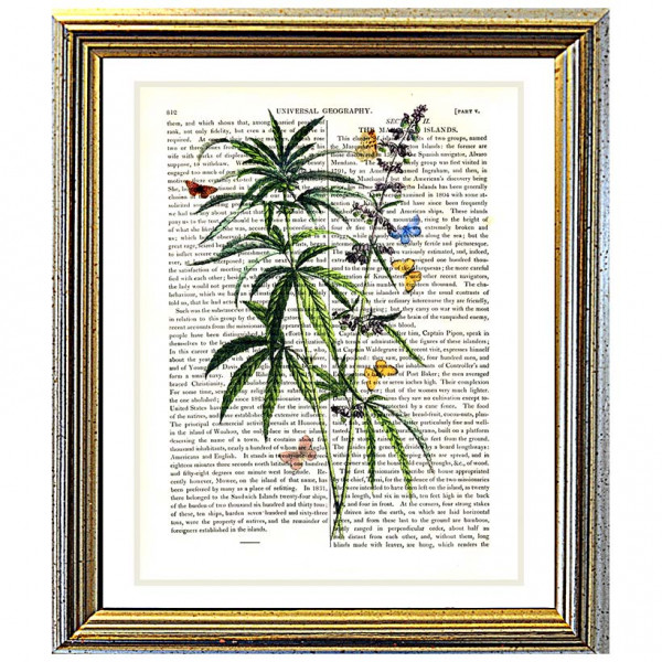 Art on antique book page. Cannabis (Marijuana)