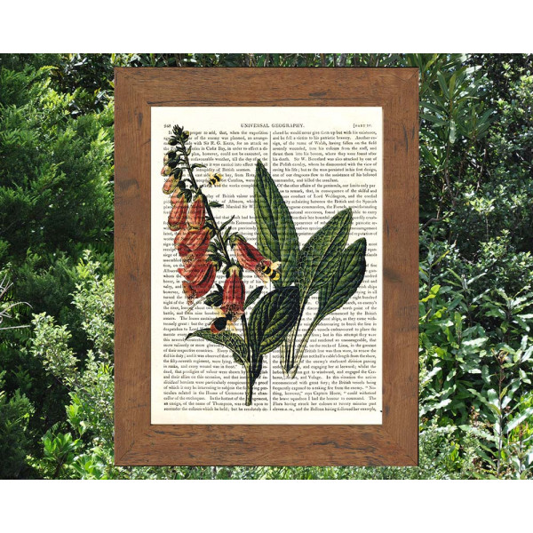 Art on antique book page. Foxglove Flowers and Bees