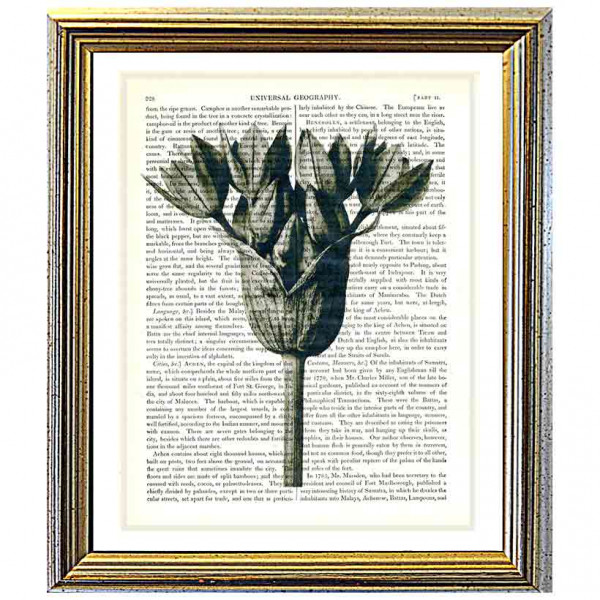 Art on antique book page. Hyacinth Flower Bud