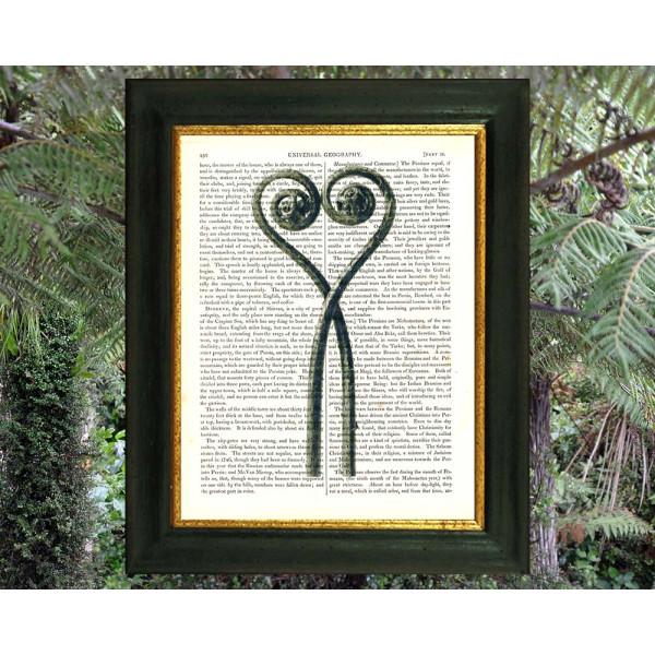 Art on antique book page. Love-heart Maidenhair Fern Fronds