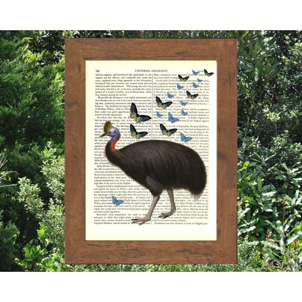 Art on antique book page. Cassowary and Rainforest Butterflies