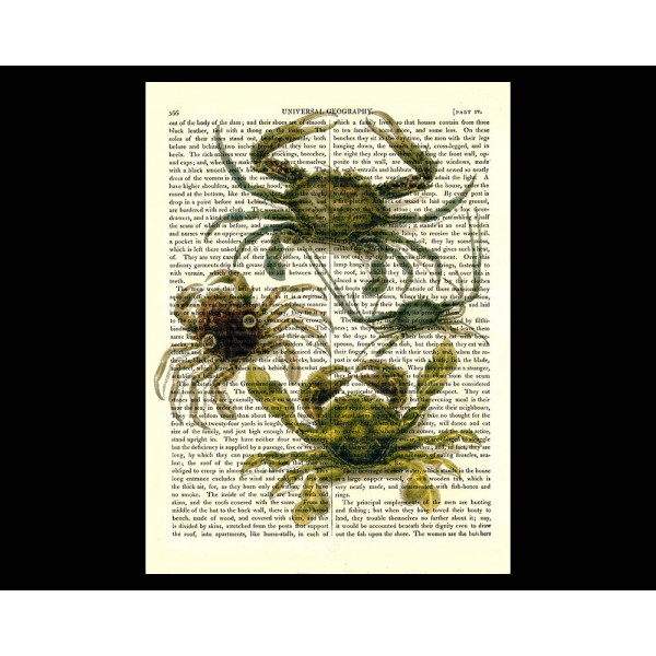 Art on antique book page. Crabs