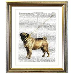 Pug Dog With Gold Collar