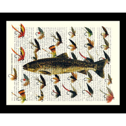 Trout with Fishing Flies
