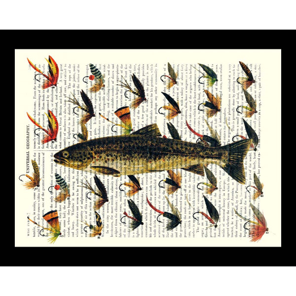 Art on antique book page. Trout with Fishing Flies
