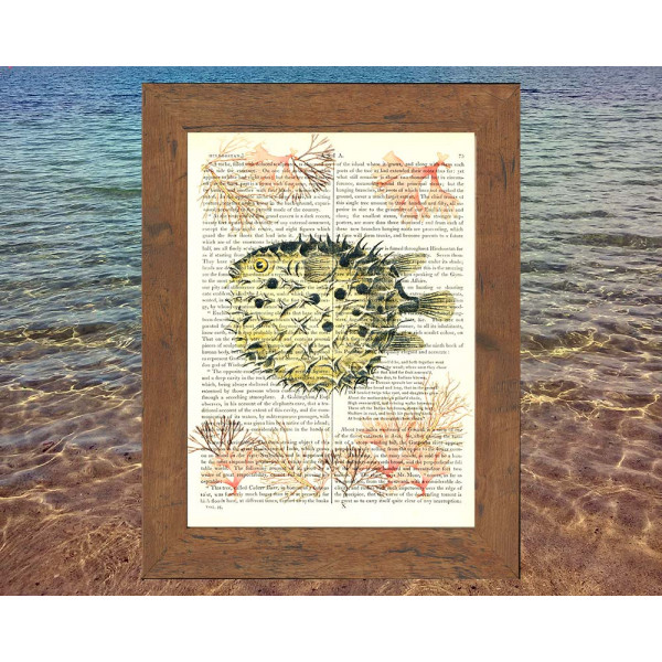 Art on antique book page. Pufferfish and Soft Coral