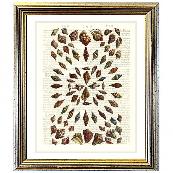 Art on antique book page. Stripey Seashells in Geometric Pattern