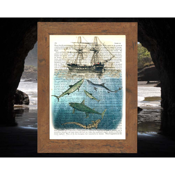 Art on antique book page. Old Ship and Sharks