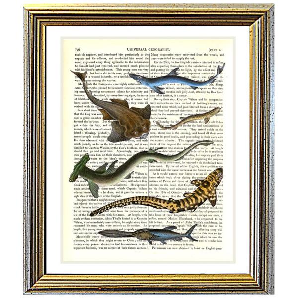 Art on antique book page. Strange Sharks