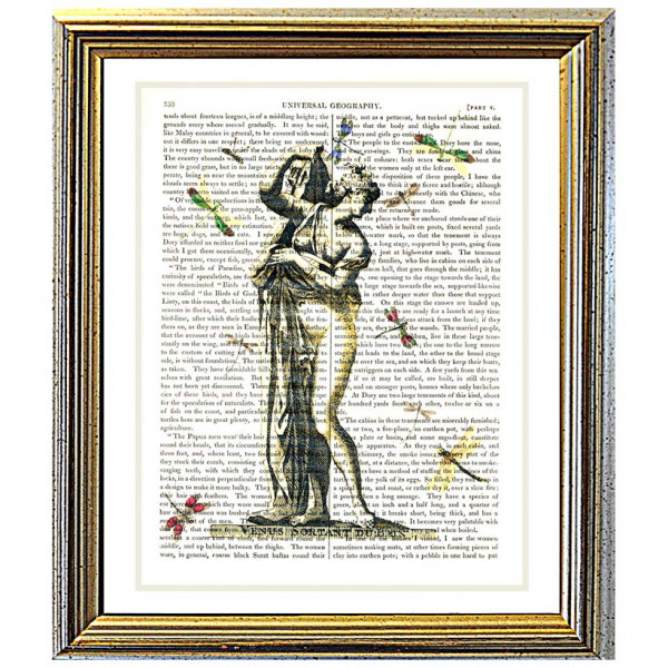 Art on antique book page. Goddess Venus surrounded by Dragonflies
