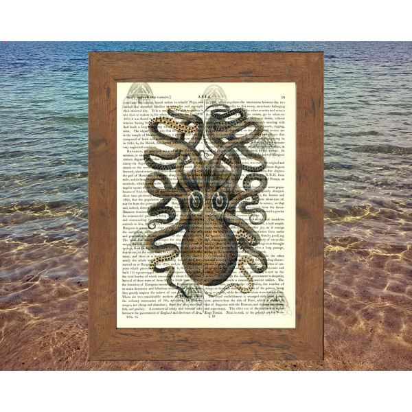 Art on antique book page. Octopus and Jellyfish